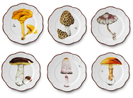 Mushroom Dinner Plates - Set of 6, each with different design