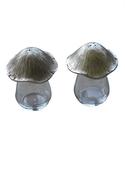 Mushroom Salt & Pepper Set