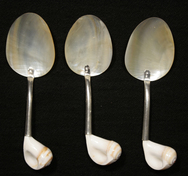 Mother of Pearl Shell Spoons