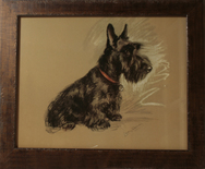 Framed Print of Scottie Dog