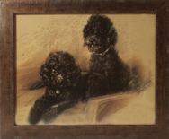 Framed Print of Pair of Black Poodles