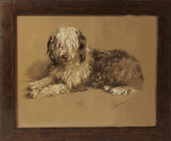 Framed Print of Old English Sheepdog