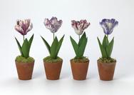 Large Porcelain Tulip
