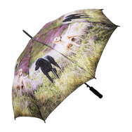 Countryside Umbrellas